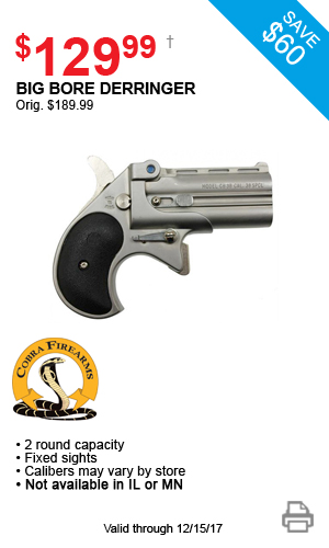Cobra Big Bore Derringer - $129.99