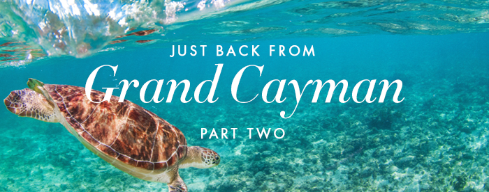 Just Back from Grand Cayman, Part 2