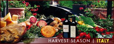 Harvest Season, Italy