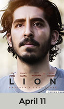 Lion April 11th
