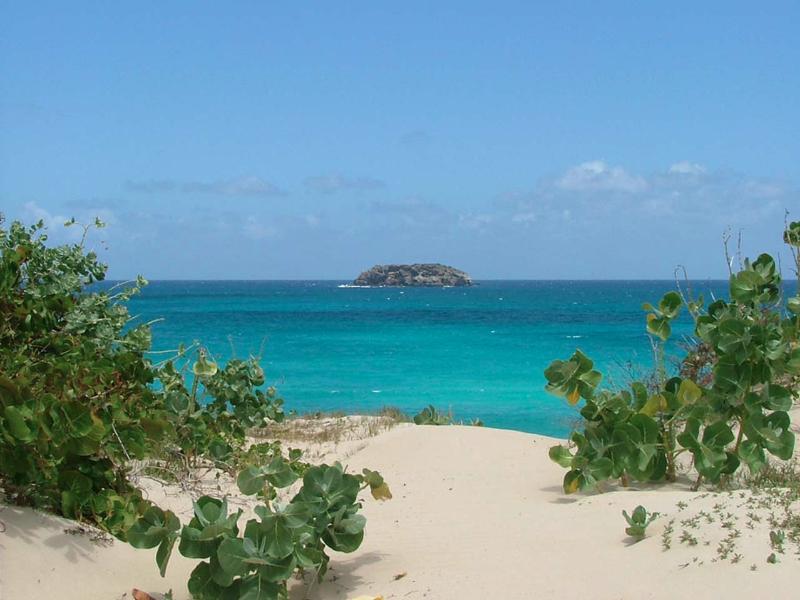 Saline Beach blog