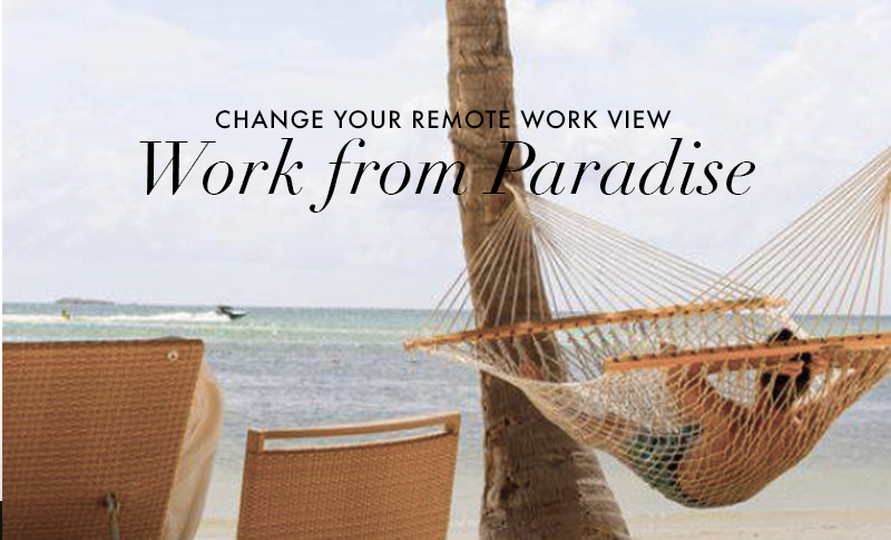 Work from Paradise